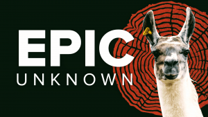 epic-unknown
